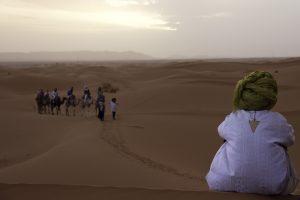 desertguide